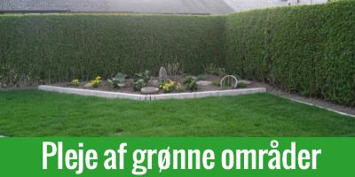 Vedligeholdelse og pleje af grønne områder i Odense & hele Fyn